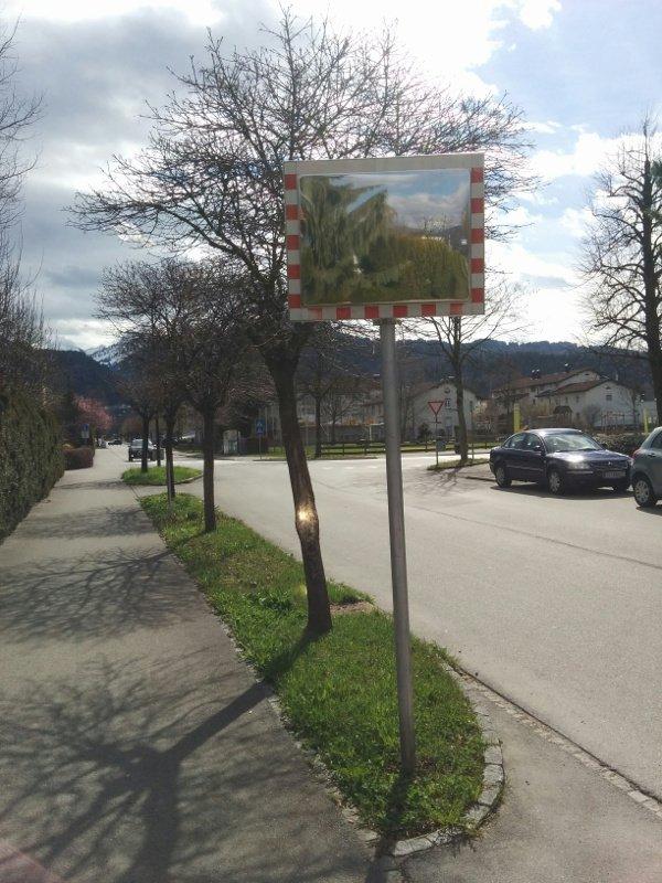 Baum mit Verkehrsspiegel
